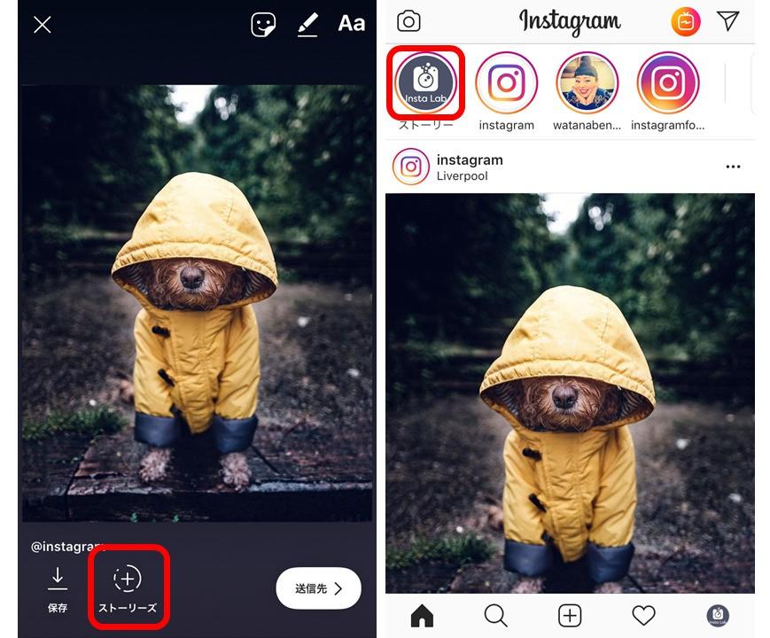 instagram-repost3