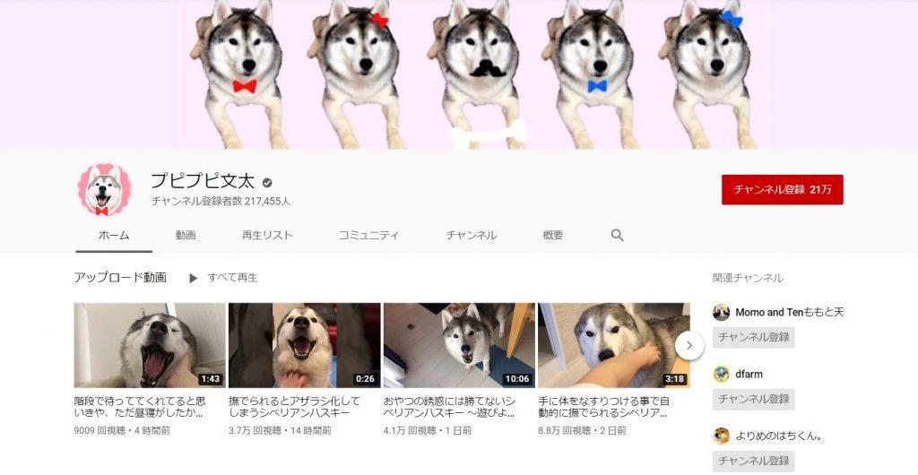 youtube-pupipupibunta