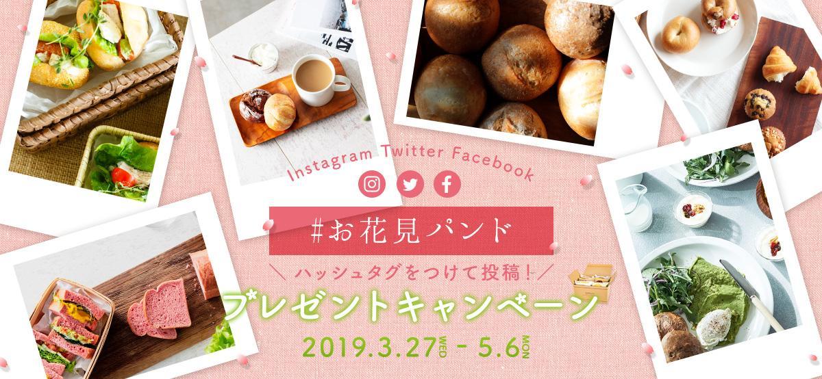 twitter-campaign-ohanami_mainimage