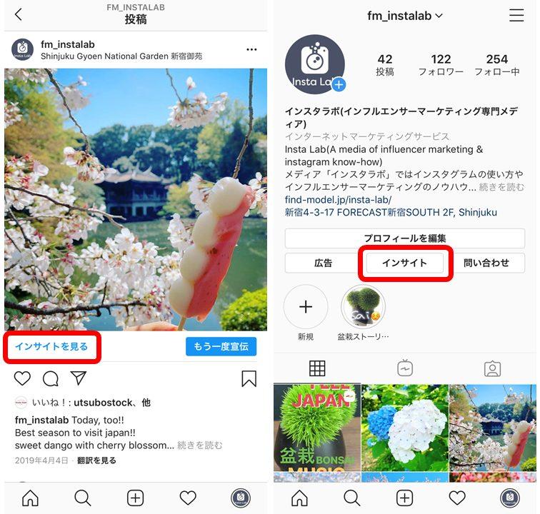 instagram-insight-button