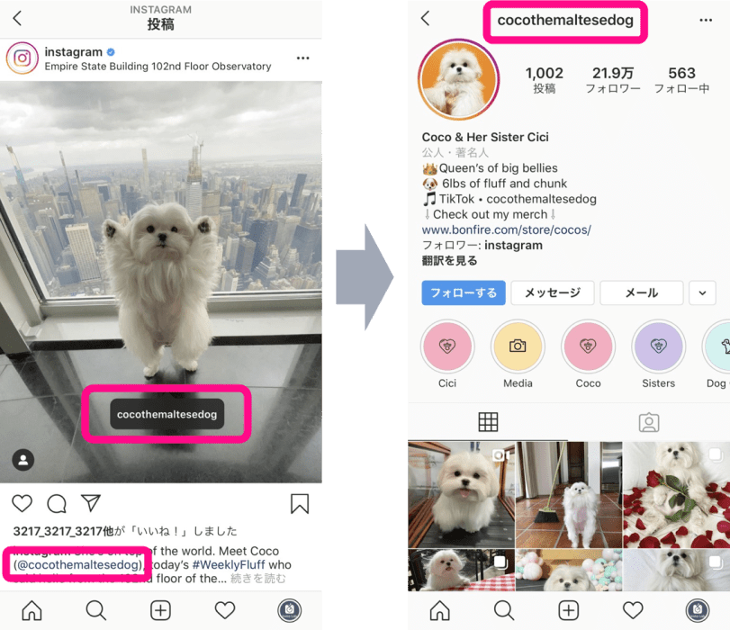 instagram-tag-mention